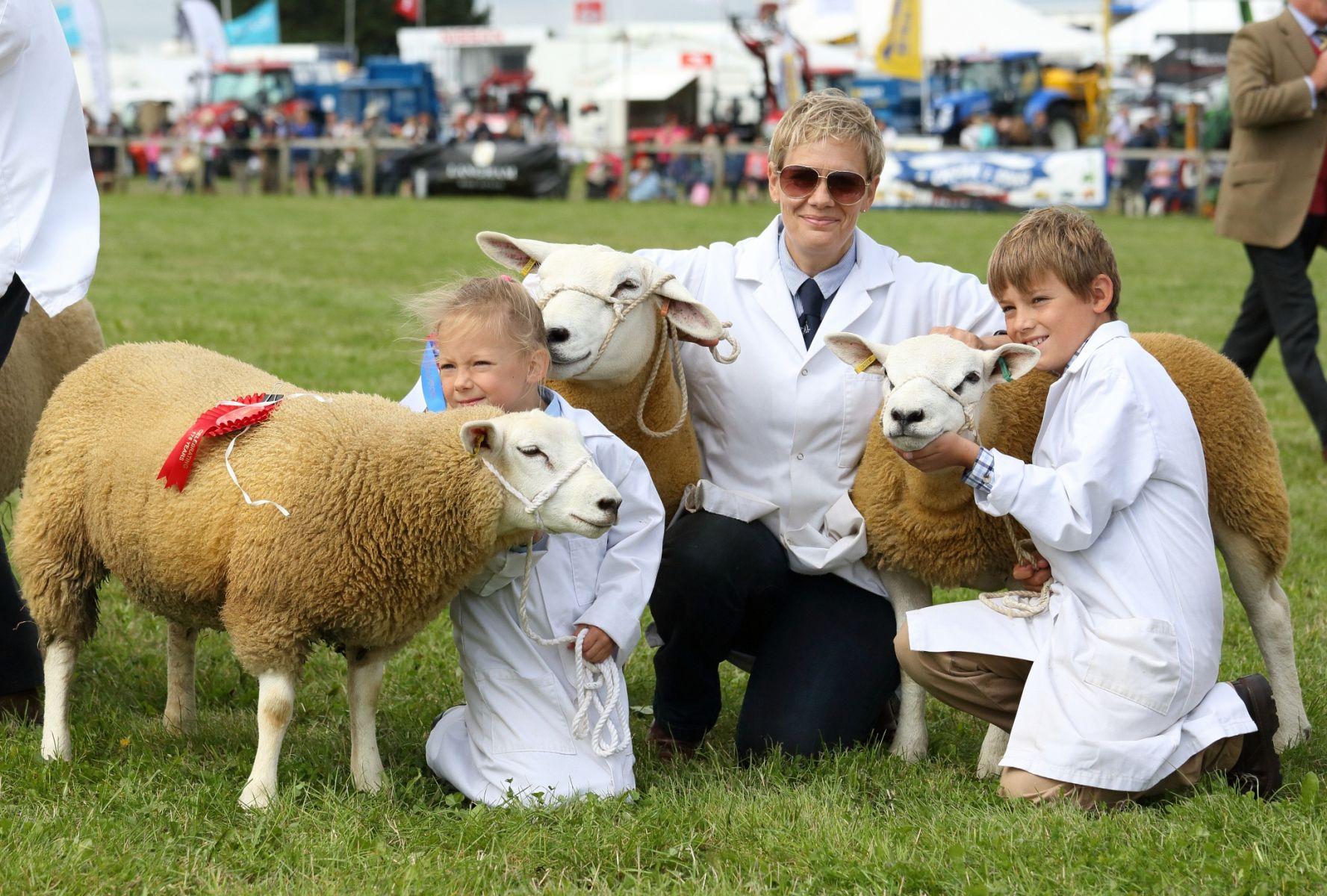 Entries open for Dorset Flock Competition